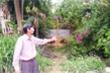 Đền bù 1m2 đất giá bằng cân cá nục: Chính quyền Đà Nẵng kháng cáo