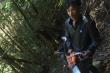 Bắt giam 3 nghi can phá rừng ở Lâm Đồng
