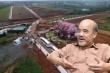 Đồi 36ha bị xẻ thành 1.000 đất nền ở Lâm Đồng: Cần truy cứu trách nhiệm hình sự