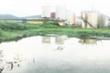 Nhà máy cồn bốc mùi thối ở Quảng Nam: Chủ tịch tỉnh chỉ đạo 'nóng'