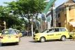 Hết cách ly xã hội, hàng loạt phương tiện ở Quảng Nam hoạt động trở lại
