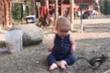 Clip: Em bé khóc lớn vì bị sóc cướp đồ ăn