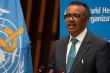 WHO: Số ca mắc COVID-19 toàn cầu lần đầu tăng sau 7 tuần