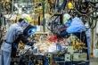 EVFTA bắt đầu có hiệu lực: Kỳ vọng vực dậy kinh tế Việt Nam giữa COVID-19