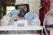 Video: Cảnh bào chế, sản xuất những liều vaccine COVID-19 đầu tiên tại Nga