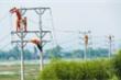 Kiến nghị giảm giá điện sau khi giá xăng xuống thấp kỷ lục