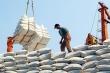 Giá gạo xuất khẩu Việt Nam dẫn đầu thế giới