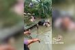Xe tải chở hàng chục con lợn lao xuống sông ở Hải Dương