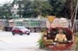 Xe tải cơi nới thành thùng, CSGT Hải Phòng: 'Chưa phát hiện trường hợp bảo kê'