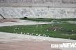 Ảnh: Dự án hồ chứa nước ngọt gần 190 tỷ xây dựng dở dang để cỏ mọc, cò đậu trên đảo Bạch Long Vĩ