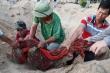 Video: Bốc mộ cho cá voi tại nghĩa địa cá lớn nhất Việt Nam