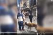Dân mạng chết cười xem clip 2 cô gái ẩu đả, chó hoang lao vào 'góp vui'