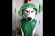 Chú chó nổi cáu vì bị chủ biến thành trò cười