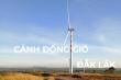 Cánh đồng quạt gió ở Đắk Lắk đẹp như ngoại ô Châu Âu, tha hồ chụp ảnh 'sống ảo'