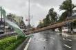 Bão số 9 càn quét khủng khiếp, gây thiệt hại nặng nề từ Đà Nẵng đến Phú Yên