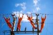 Hơn 6.000 khách bị ghi sai hoá đơn tiền điện, EVN phạt nặng cán bộ