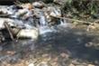 Hai nghi phạm đổ dầu thải gây ô nhiễm nguồn nước sông Đà khai gì?