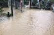 Nước lũ cuốn trôi người đi rừng ở Khánh Hòa