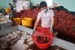 Cận cảnh quy trình bảo quản vải thiều Bắc Giang