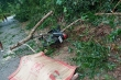 Thừa Thiên - Huế thiệt hại nặng sau bão số 5: Chủ tịch tỉnh phê bình khâu dự báo