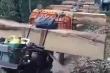 Phá rừng quy mô lớn tại Kon Tum: Tỉnh chỉ đạo điều tra, xử lý nghiêm