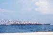 Hơn 200 tàu Trung Quốc neo đậu bất thường ở bãi đá ngầm trên Biển Đông