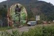 Phát hiện thi thể người treo cổ trên đèo Bảo Lộc