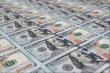 Tỷ giá USD hôm nay 23/10: Phục hồi từ đáy