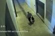 Video nghi phạm đặt bom tại trụ sở Dân chủ và Cộng hoà trước sự kiện đồi Capitol