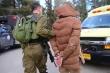 Israel bắt giữ chỉ huy cấp cao của Hamas