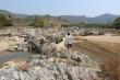 Gây khô hạn, 2 công ty thủy điện sẽ đền bù thiệt hại cho dân