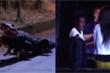 Clip: Chó cải trang thành cá sấu dọa người đi đường