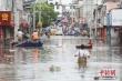 Trung Quốc: 'Lũ số 3' đang hình thành trên sông Trường Giang
