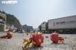 Thông quan cửa khẩu Hữu Nghị, 'giải cứu' nông sản tồn đọng từ Tết Canh Tý