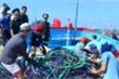 Bắt giữ tàu cá dùng súng điện khai thác hải sản trái phép trên biển Quảng Ngãi