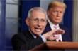 Tổng thống Trump ám chỉ sa thải 'siêu cố vấn' chống COVID-19