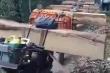 Bắt quả tang 11 lâm tặc lái xe máy độ chế chở gỗ ra khỏi rừng