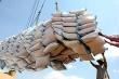 Sở Công Thương Cần Thơ kiến nghị giải quyết hàng chục nghìn tấn gạo 'nằm cảng'