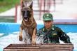Biên phòng Việt Nam cùng 'vũ khí đặt biệt' sẵn sàng cho  Army Games 2021