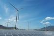 Doanh nghiệp đua nhau bỏ vốn vào điện gió, điện mặt trời