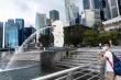 Singapore: Số ca mắc COVID-19 tăng kỷ lục trong cộng đồng lao động nhập cư