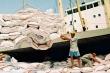 Tạm ứng hạn ngạch 100.000 tấn gạo để gỡ khó cho doanh nghiệp xuất khẩu