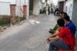 Nổ súng lúc rạng sáng ở Tiền Giang, 1 người nguy kịch