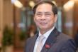 Chân dung tân Bộ trưởng Ngoại giao Bùi Thanh Sơn
