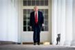Chia tay Nhà Trắng khó khăn, ông Trump sẽ đi đâu?