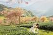 Ảnh cưới tuyệt đẹp của con gái diva Thanh Lam