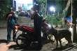 Hàng trăm chiến sỹ cùng chó nghiệp vụ truy bắt kẻ vượt tù trốn trên đèo Hải Vân