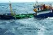 Trung Quốc trao trả 8 ngư dân Quảng Ngãi bị chìm tàu ở Hoàng Sa
