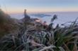 Nhiệt độ Fansipan xuống dưới 0 độ C, băng giá phủ trắng cỏ cây, mặt đất