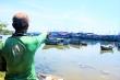 Luồng lạch bị bồi lấp, tàu của ngư dân 'chôn chân' tại cảng Sa Huỳnh
